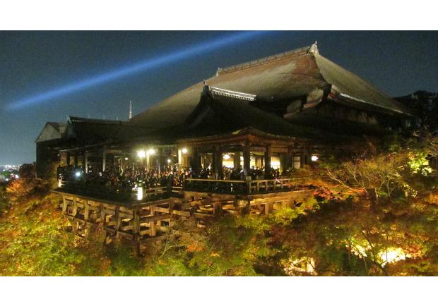 京都  清水寺 秋楓夜的特別拜觀