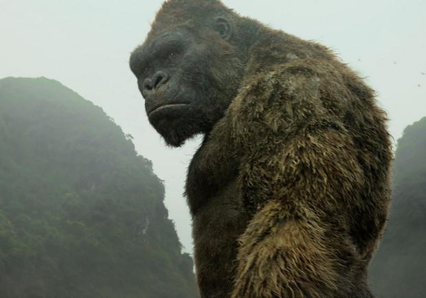 《金剛:骷髏島》:最震撼霸氣的自然守護神
