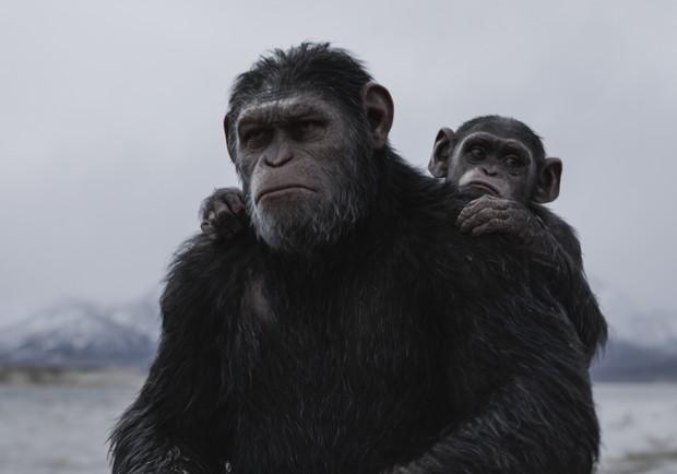 《猩球崛起:終極決戰》好評席捲!「好萊塢影史最成功的系列電影」