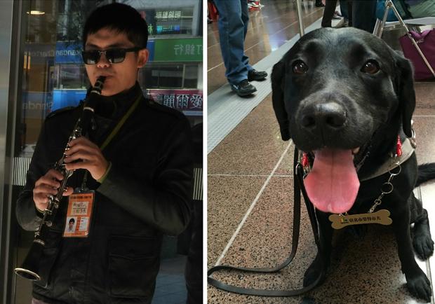 《遇見街貓BOB》導盲犬版