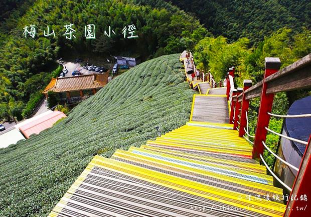 前進嘉義梅山,在蜿蜒的休閒小徑欣賞茶園美好風光!