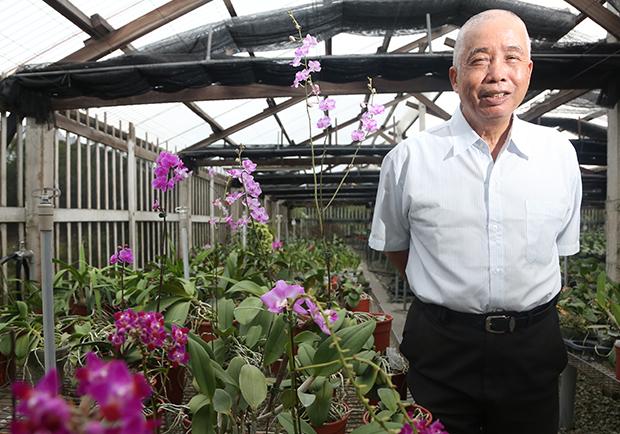 劉定榮:培育蘭花一甲子,堅持根留台灣