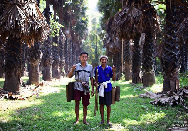 美好的蜜釀滋味 老爺爺守護的百年棕櫚園