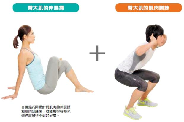 透過「伸展操+肌肉訓練」伸展肌肉的優點
