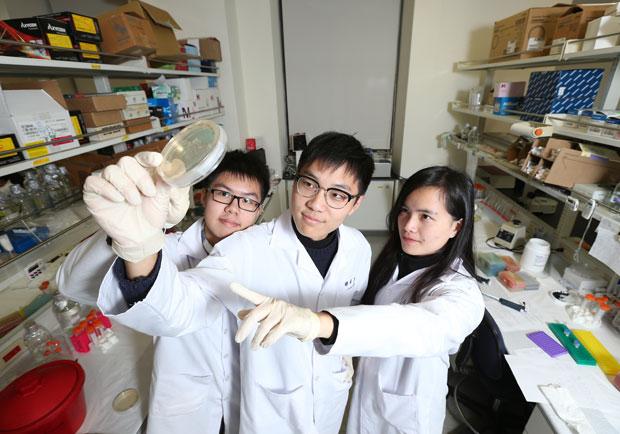 生醫人才決戰數位力!陽明大學翻轉生醫教育