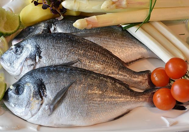 吃對魚,孩子好聰明