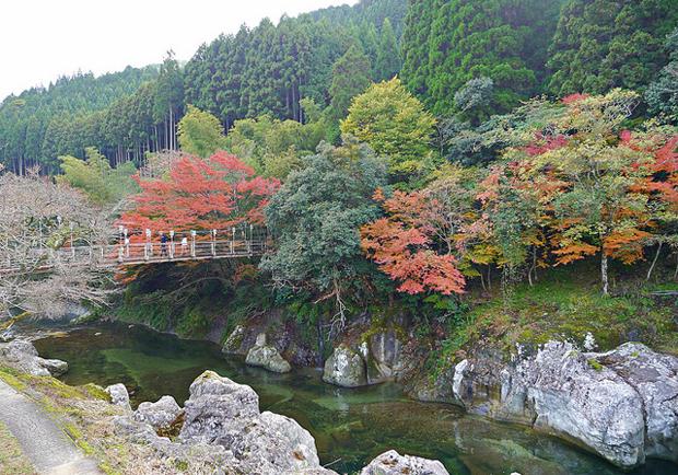 日本國天然紀念物:猿飛甌穴群.稻草人祭典
