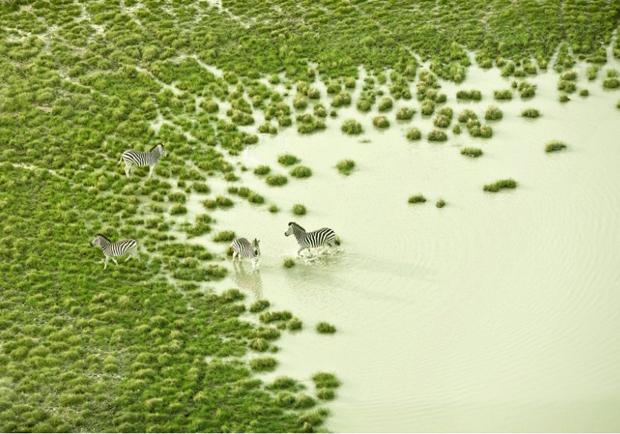 遊走於飄渺的虛實之間!澄澈透明感攝影紀錄非洲南方之美!