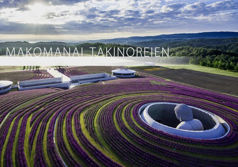 安藤忠雄充滿禪意的北海道靈園設計:用15萬株薰衣草圍繞大佛