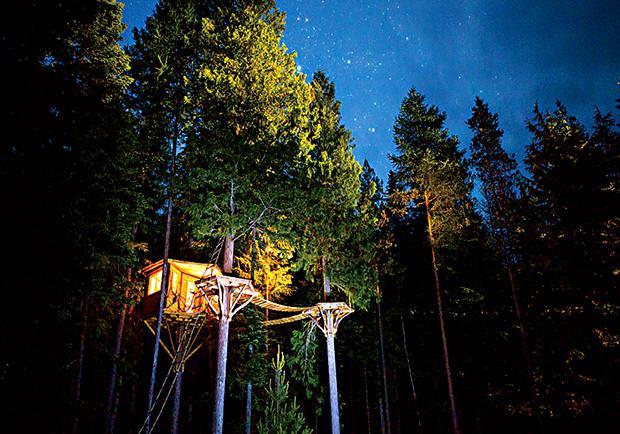 九公尺高的空中樹屋生活 自行車變身升降梯