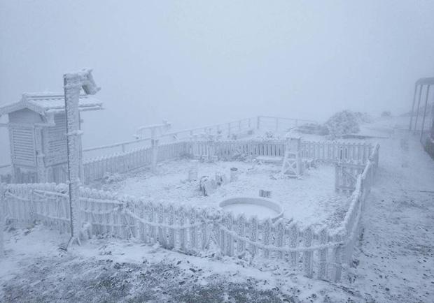 合歡山玉山降雪了 遊客興奮上山追雪