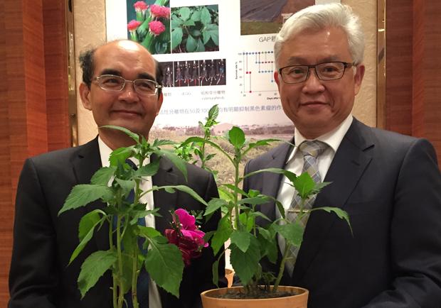 植物抗癌藥 真的是抗癌新希望嗎?