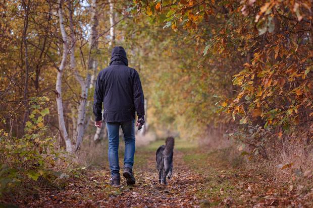 每天「吃土」益處多,增強抵抗力還能減緩發炎?