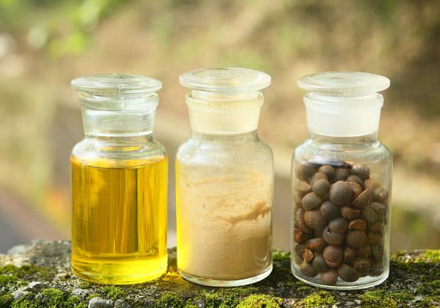 苦茶油功效有哪些?如何正確選購?專家完整說明