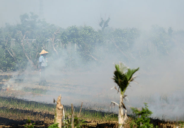 PM2.5 每增加 10,人類將少 200 多天壽命