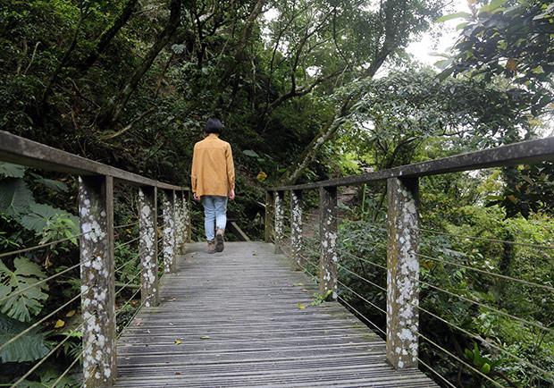 森林浴可調節自律神經!走進山林的 14 個好處