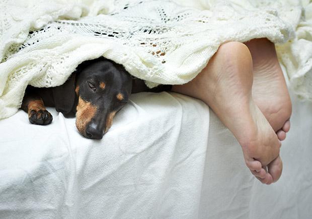 冬天手腳冰冷睡不好,中醫師 3 招讓身體熱起來