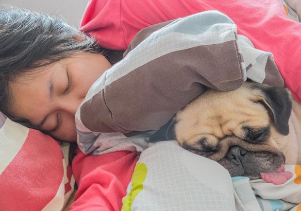 睡不安穩易生病,醫師教你如何順利入睡、睡得好