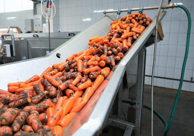工廠統一用「漂白水」洗菜殺菌,消費者該不該擔心?