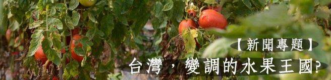 台灣變調的水果王國
